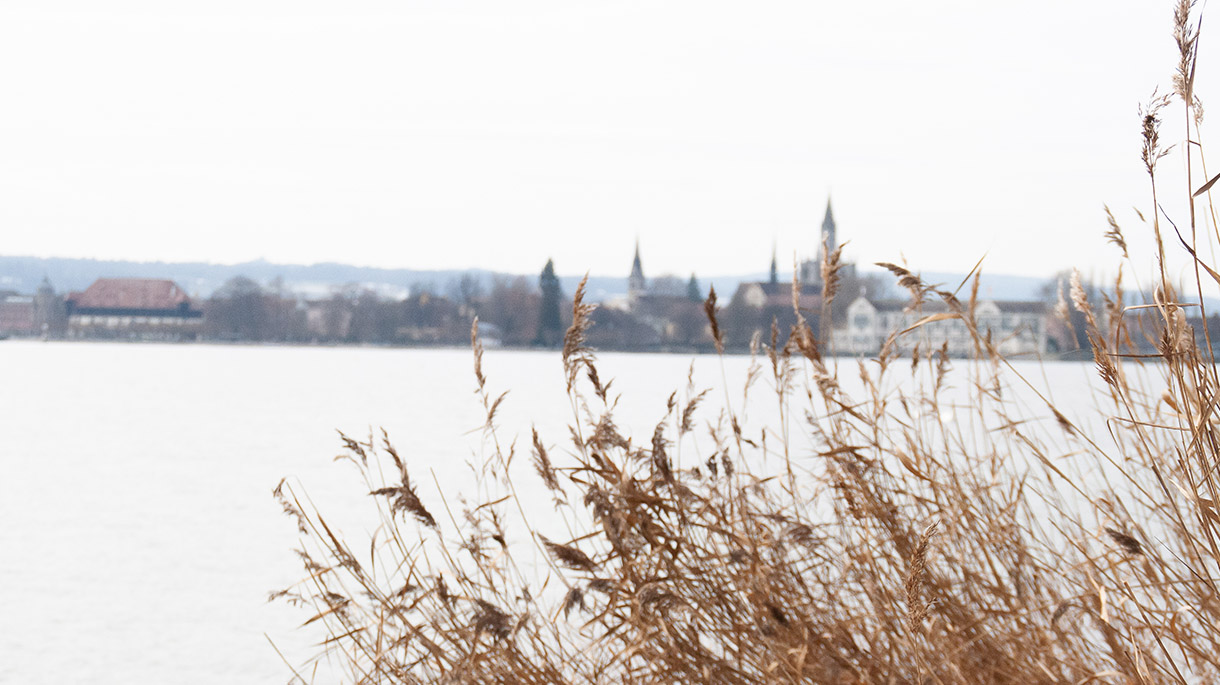 Ledertaschen aus Konstanz